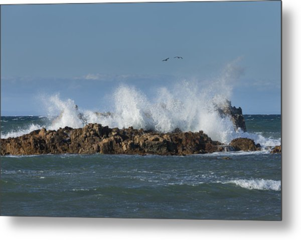 Crashing Waves And Gulls Metal Print