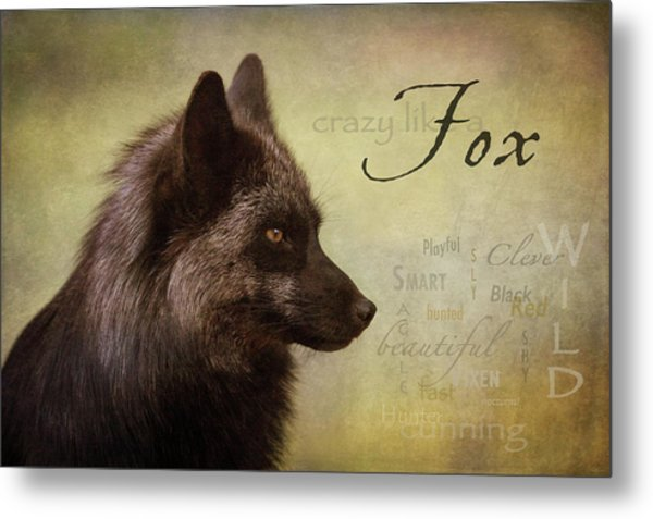 Crazy Like A Fox Metal Print