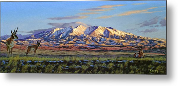 Crazy Mountains-morning Metal Print