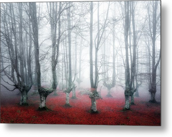 Creatures Of Egirinao II Metal Print