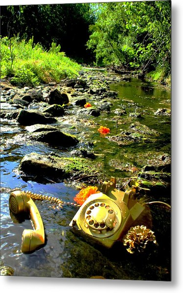 Creek Call Metal Print