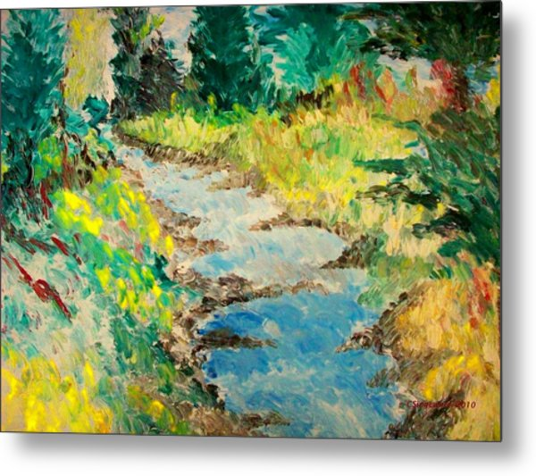 Creek Metal Print by Cary Singewald