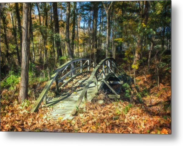 Creek Crossing Metal Print