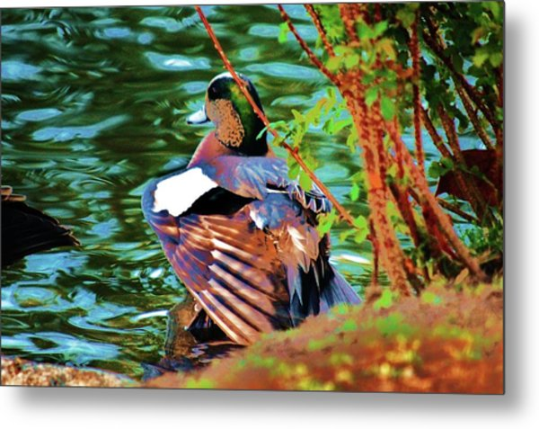 Creek Side Metal Print