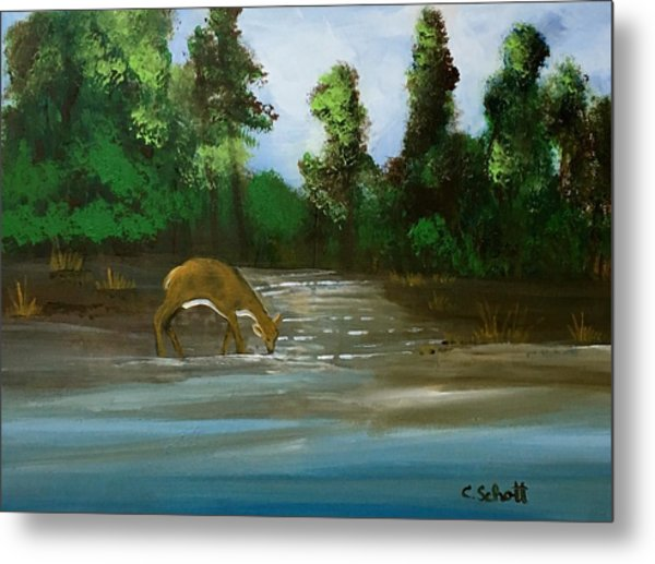 Creekside Drink Metal Print