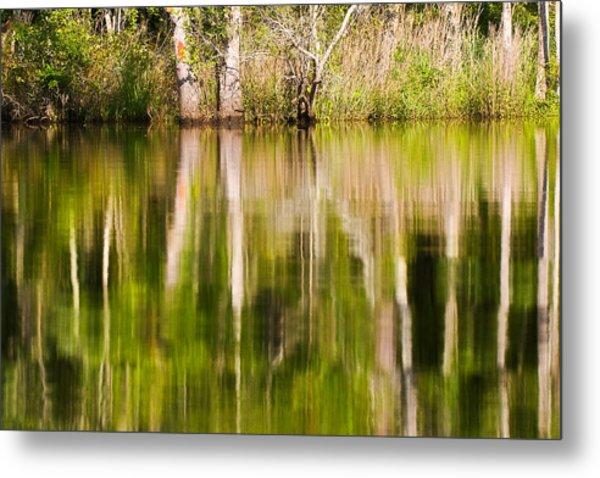 Creekside Reflections Metal Print