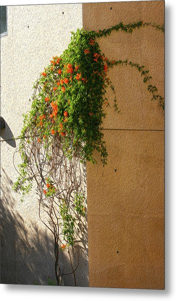 Creeping Plants Metal Print