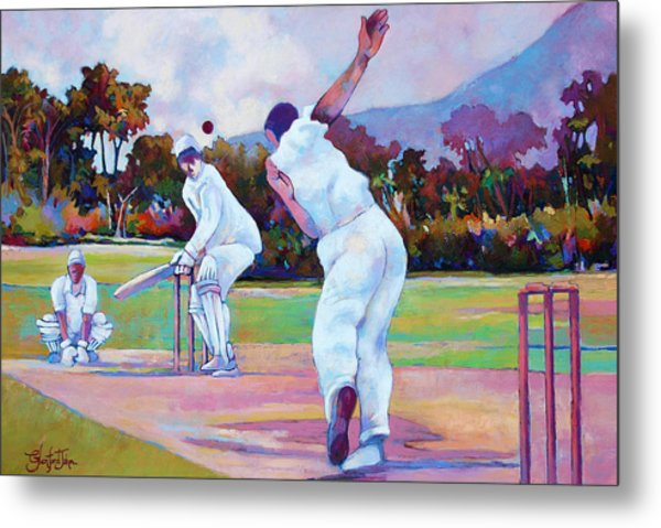 Cricket In The Park Metal Print