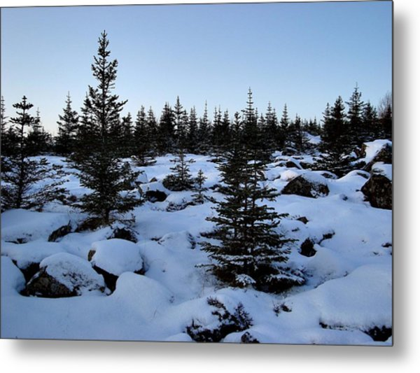 Crisp Clear Morning Metal Print by Marilynne Bull