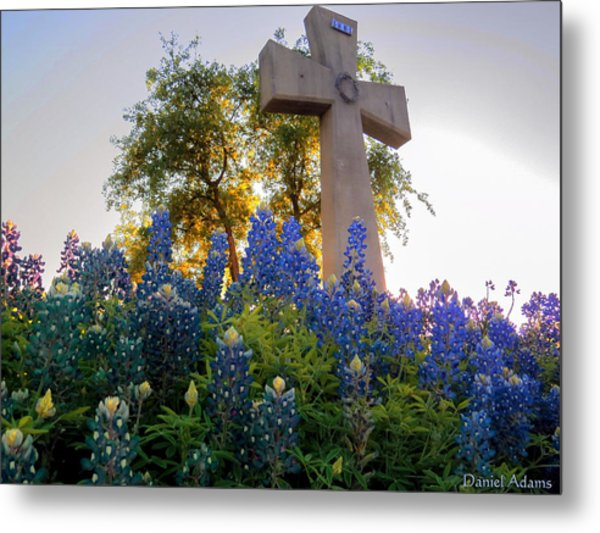 Da225 Cross And Texas Bluebonnets Daniel Adams Metal Print