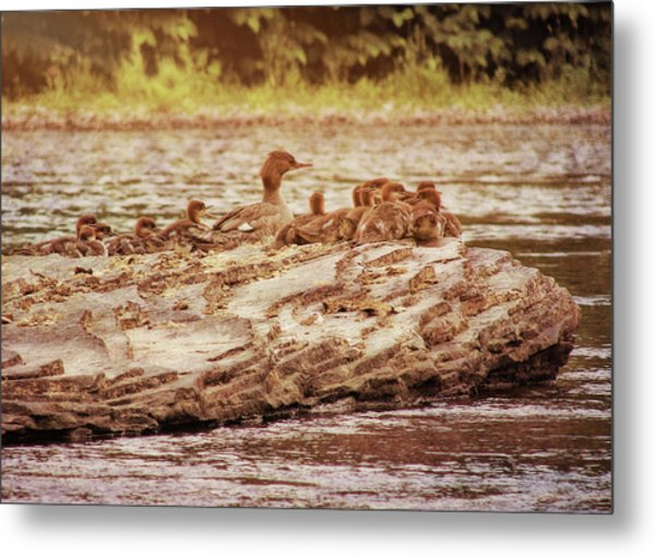 Crossing The River Metal Print by JAMART Photography