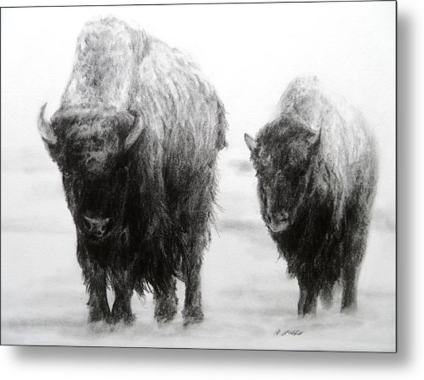 Crossing Yellowstone Metal Print