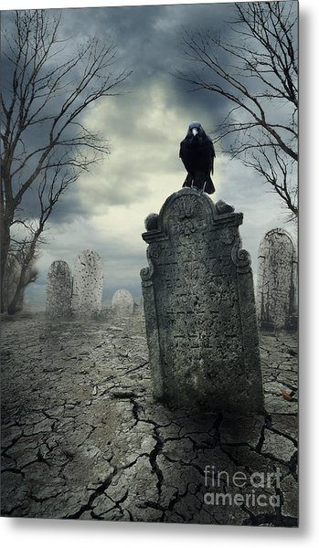 Crow On The Tombstone Metal Print
