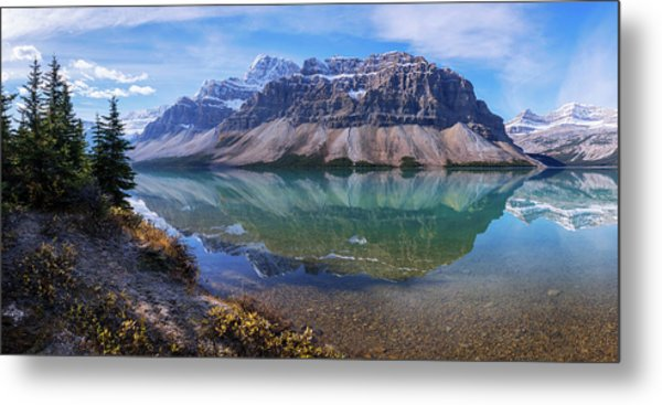 Crowfoot Reflection Metal Print