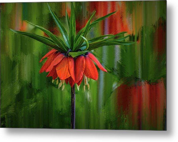 Crown-imperial Abstract #h5 Metal Print