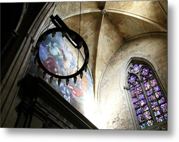 Metal Print featuring the photograph Crown Of Thorns by Rasma Bertz