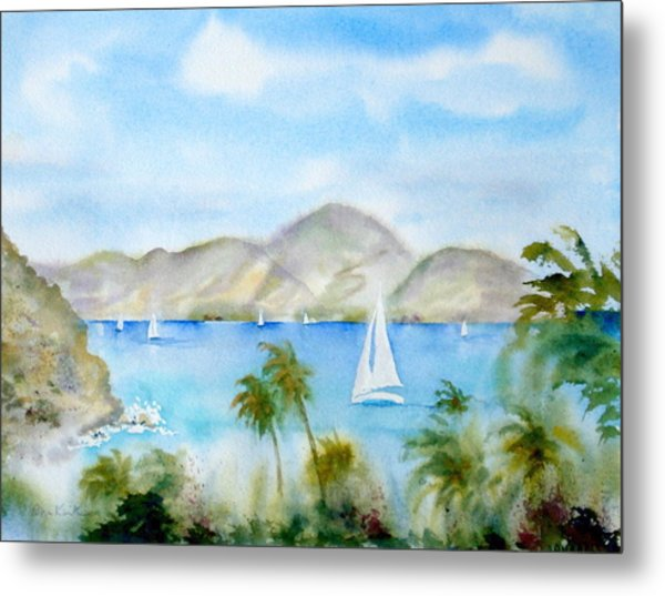 Cruising In The Caribbean Metal Print