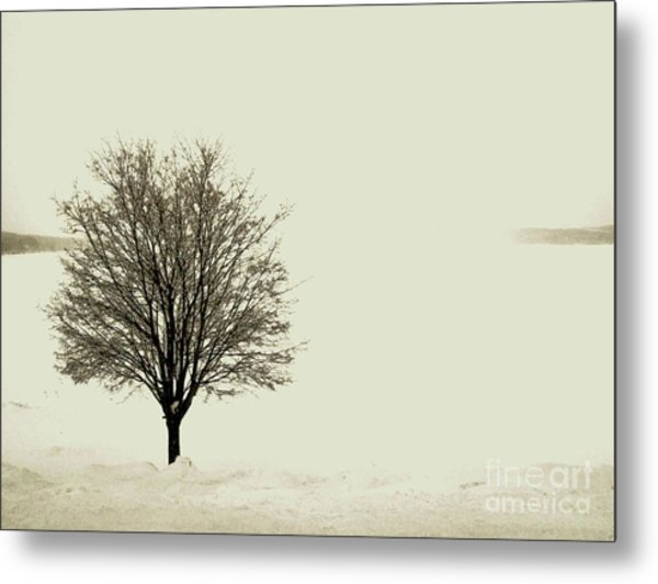 Crystal Lake In Winter Metal Print