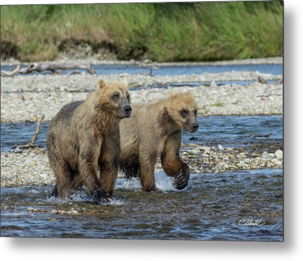 Cubs On The Prowl Metal Print