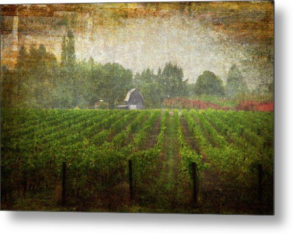 Cultivating A Chardonnay Metal Print