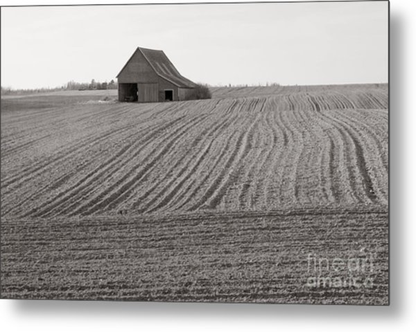 Cultivation Metal Print by Lionel F Stevenson