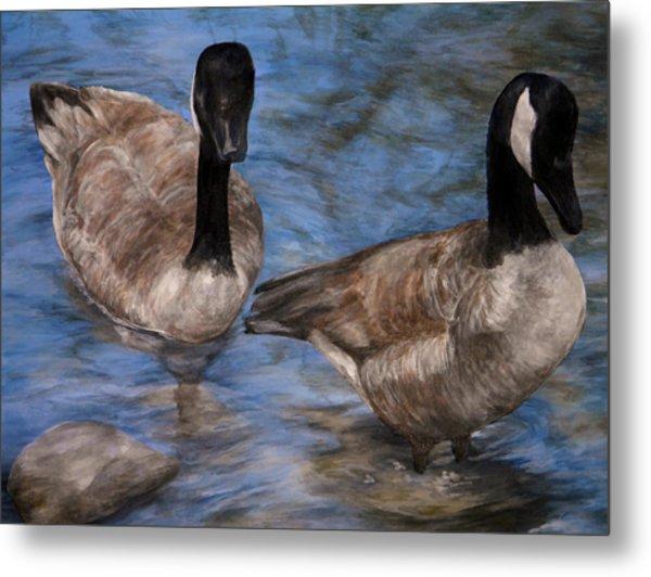 Curious Geese Metal Print
