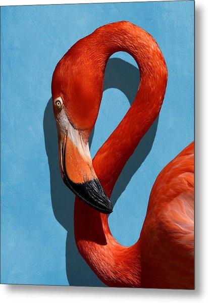 Curves, A Head - A Flamingo Portrait Metal Print