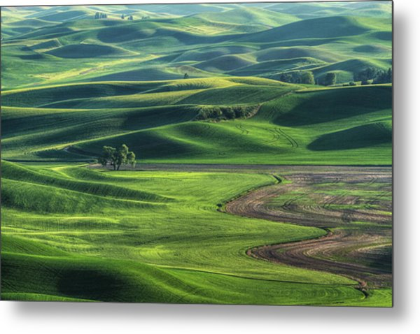 Curves Of The Palouse Metal Print