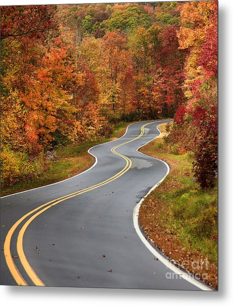 Curvy Road In The Mountains Metal Print
