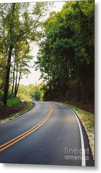 Curvy Road Metal Print