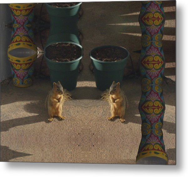 Cute Baby Squirrels On The Porch Metal Print