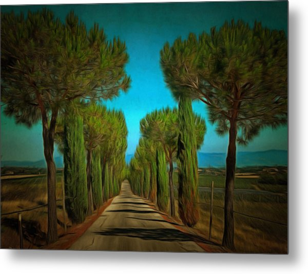 Cypress Avenue Metal Print