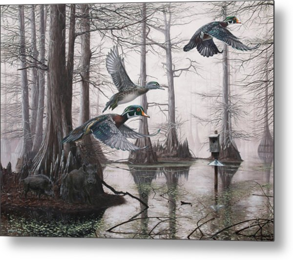 Cypress Bayou Neighbors Metal Print