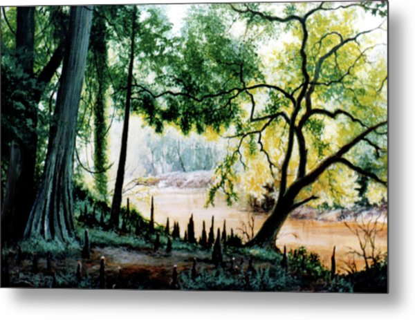 Cypress Knees Metal Print