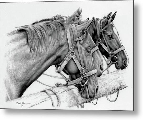 Da158 3 Horses Daniel Adams  Metal Print