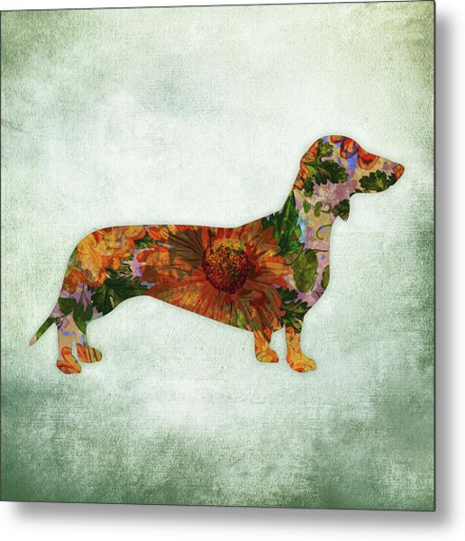 Dachshund Floral On Green Metal Print