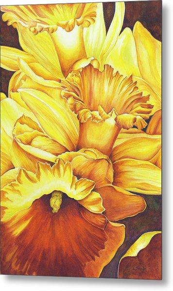 Daffodil Drama Metal Print