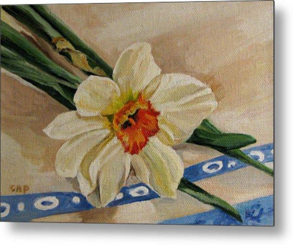 Daffodil Reclining Metal Print by Cheryl Pass