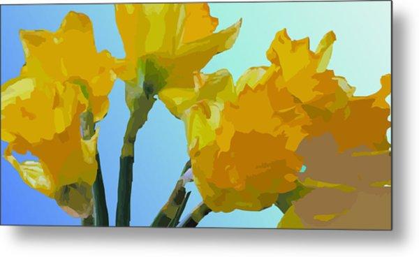 Daffodils Metal Print by Robert Bissett