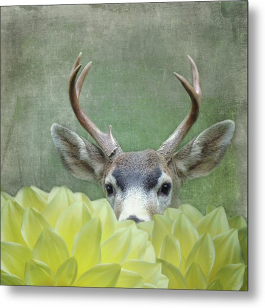Metal Print featuring the digital art Dahlia Deer by Sally Banfill