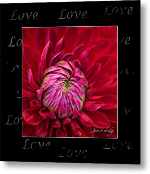 Dahlia Of Love Metal Print