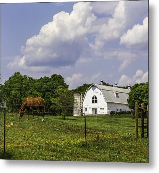 Dairy Barn Panorama 03 Metal Print