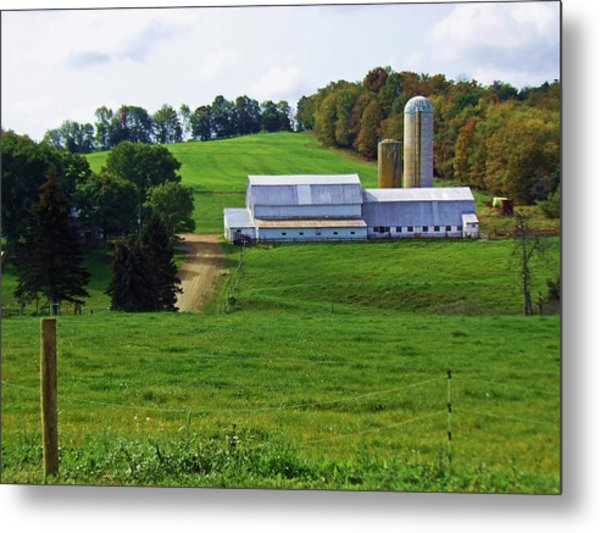 Dairy Country Metal Print