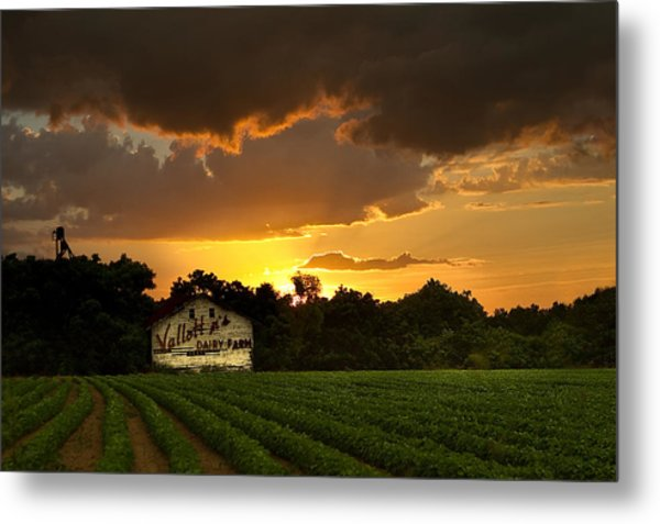 Dairy Fresh Metal Print
