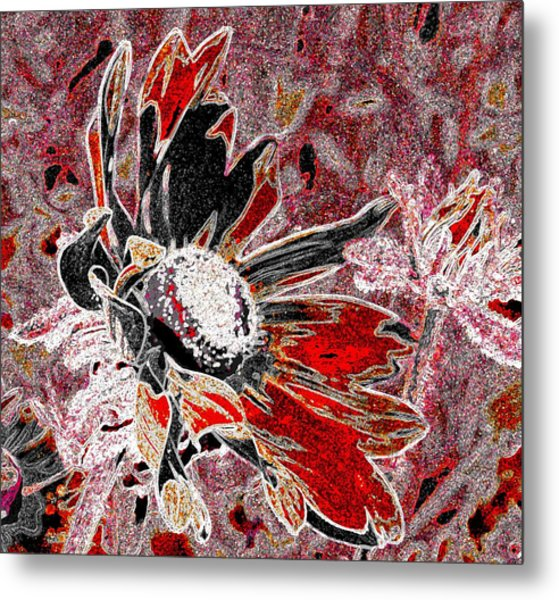 Daisy In Red Metal Print