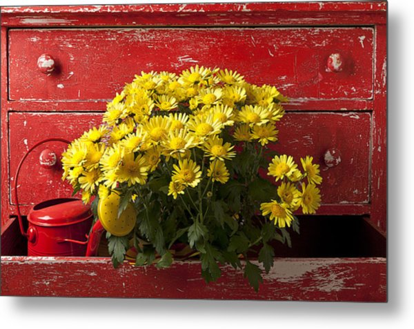 Daisy Plant In Drawers Metal Print