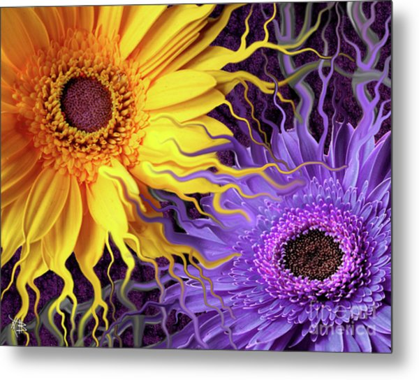 Metal Print featuring the painting Daisy Yin Daisy Yang by Christopher Beikmann