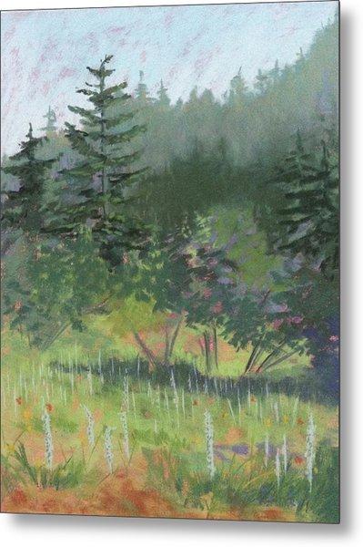 Dale Creek Meadow Metal Print