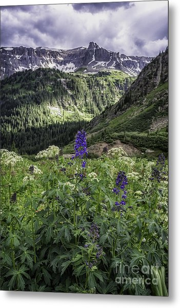 Dallas Peak Metal Print