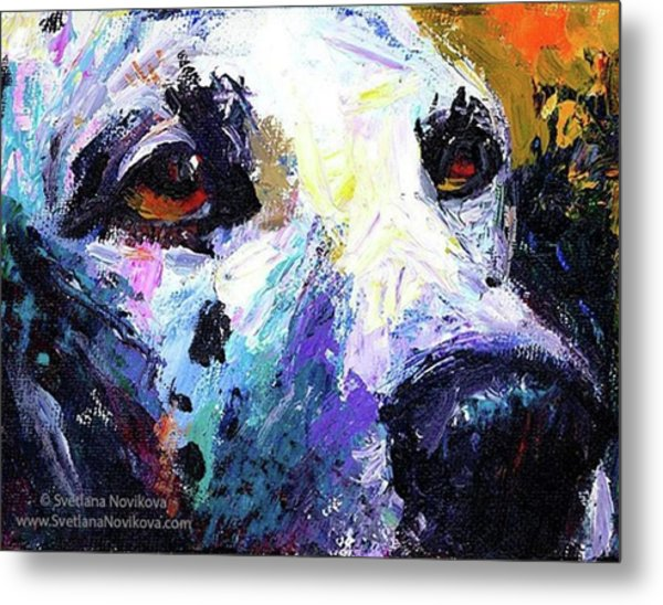 Dalmatian Dog Close-up Painting By Metal Print